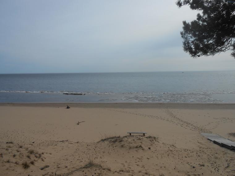 Peipsijärven rannoilla on kilometritolkulla autiota hiekkarantaa.  (Photo/kuva: Aristarkos Sirviö)